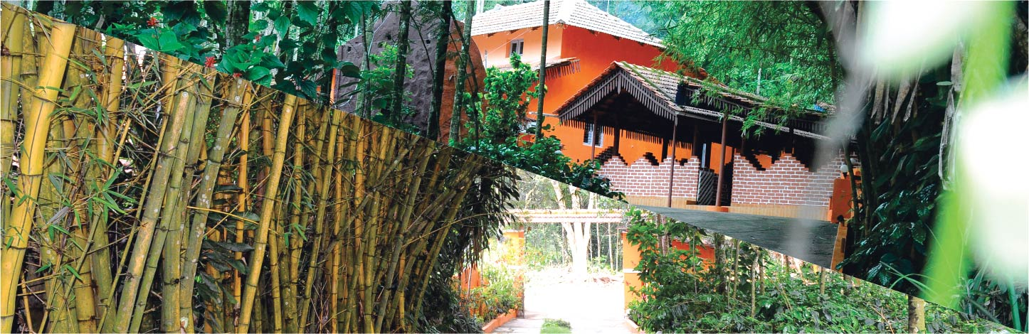 dinner hall in chikmagalur